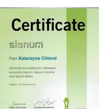 Praktyczny kurs nakładania kompozytu Signum, Signum Ceramis oraz Signum Matrix - Katarzyna Chłond