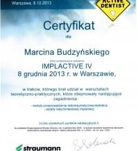 Implactive IV - warsztaty teoretyczno-praktyczne - Marcin Budzyński