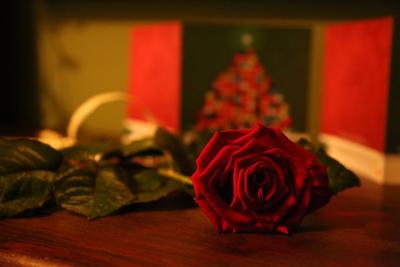 Życzenia dla Ewy Ziemby-Popławskiej