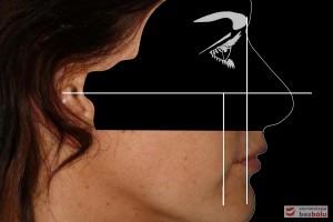 Wyznaczanie pola biometrycznego
