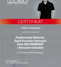 Projektowanie Uśmiechu, Świat Procesów Cyfrowych Dzień DSD Workshop z Bartoszem Cerkaskim - dr Marcin Budzyński