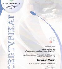 Plastyczna chirurgia śluzówkowo-dziąsłowa - Marcin Budzyński