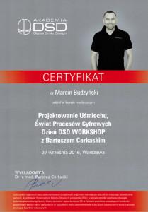 Certyfikat-DSD-Workshop