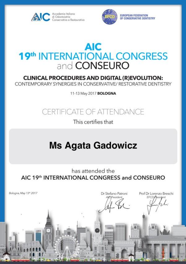 19th-AIC-congress-www
