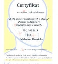 Cykl kursów praktycznych z okluzji - Malwina Krasicka