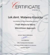 From Macro to Micro - lek. dent. Malwina Krasicka