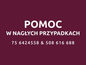 Infolinia alarmowa Stomatologii Bez Bólu!